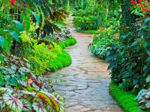 Garden path in Flower garden